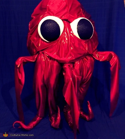 Octopus Twins Costume