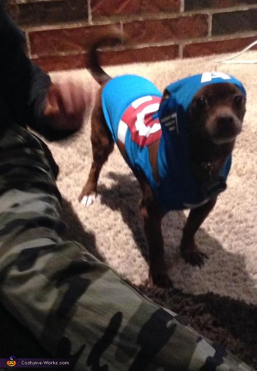 RICCO as Captain America, Olaf Dog Costume
