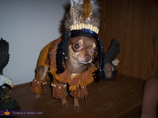 One Lil Indian Homemade Costume