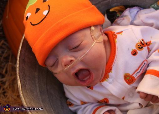 The Littlest Baby Pumpkin Costume