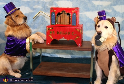 Organ grinder & his monkey - Homemade costumes for pets