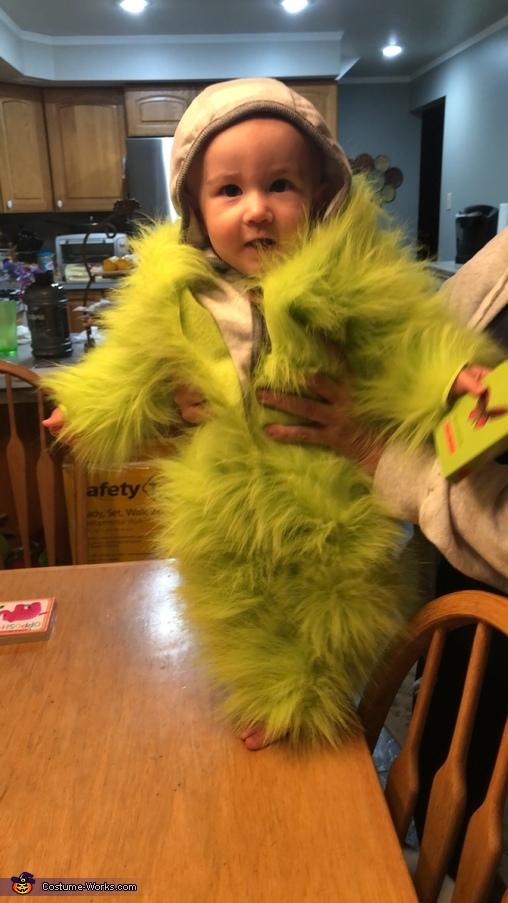 Oscar the Grouch Homemade Costume