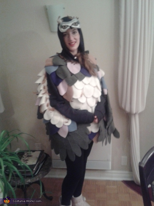 Owl, Owl Costume