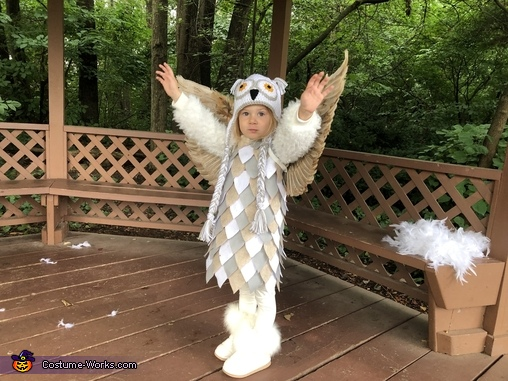 Owl Homemade Costume