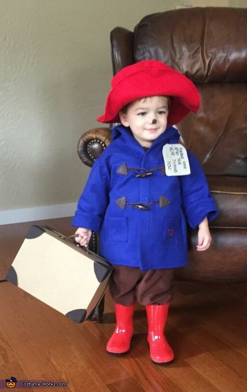 Ace the Paddington Bear, Paddington Bear Costume