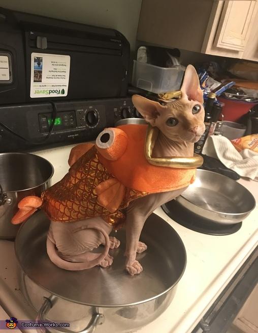 Pan Fried Cat-Fish Costume