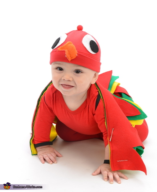 Parrot Baby Homemade Costume
