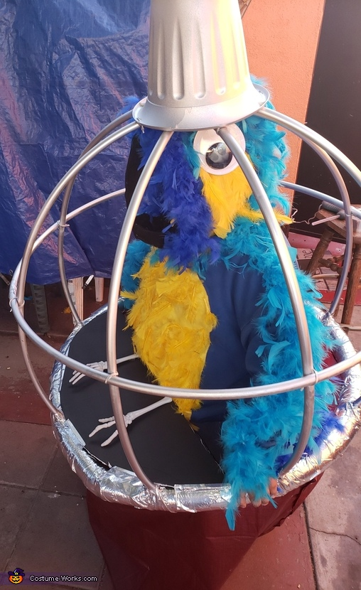 Parrot in a Cage Costume