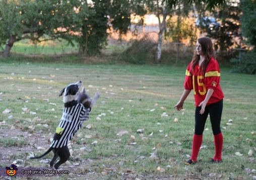 Nice catch ref!, Pawball Game Costume