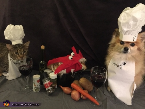Pawfect Dinner Pets Costume