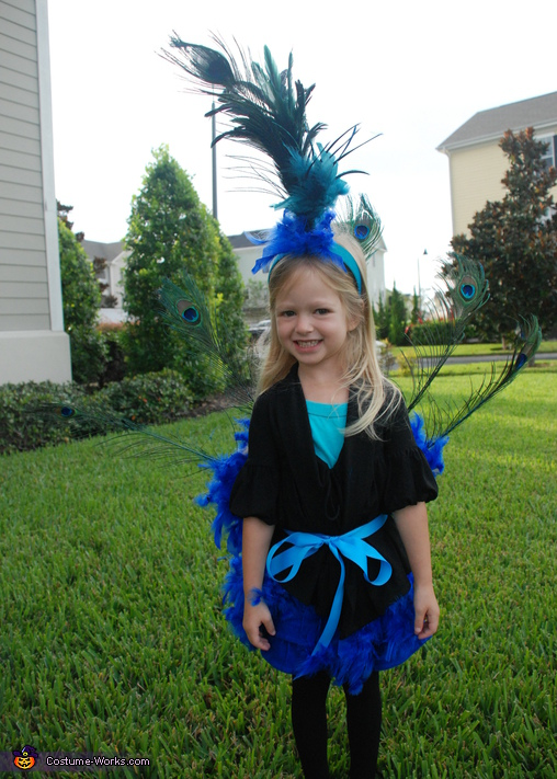 Peacock , Peacock and Flamingo Costume