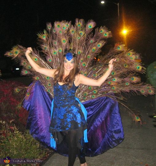 Homemade Peacock Costume