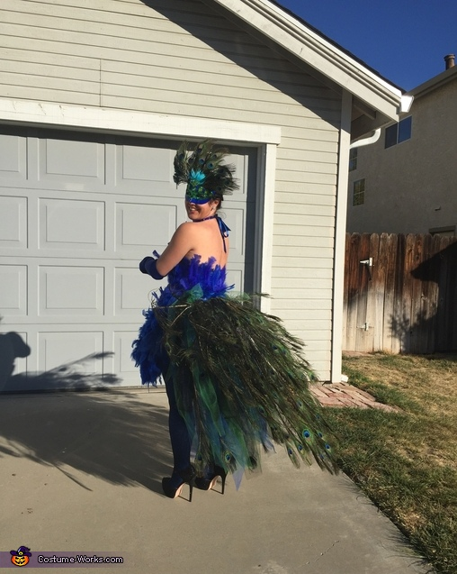Back, tail down, Peacock Costume