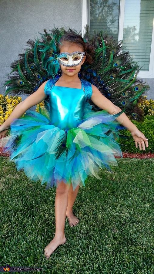 1d6de5568 Homemade Peacock Costume for Girl