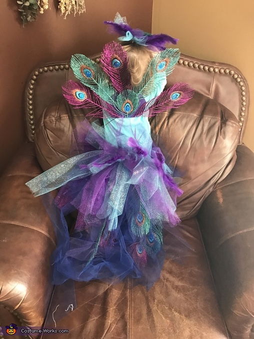 Peacock Baby Costume