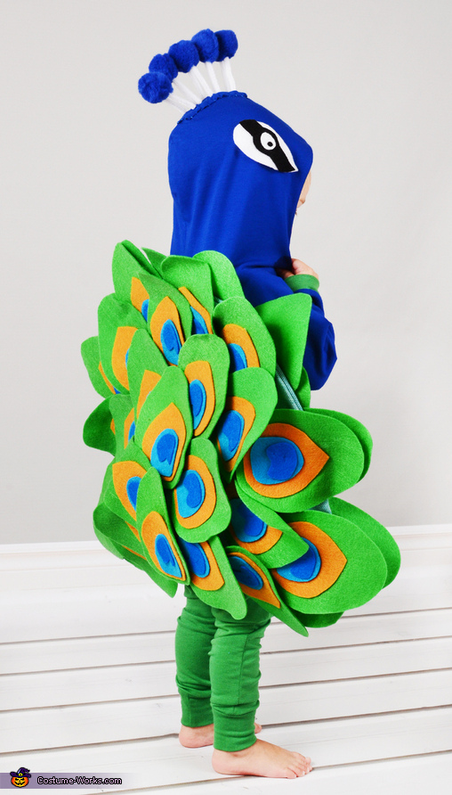 peacock from the back, Peacock Baby Costume