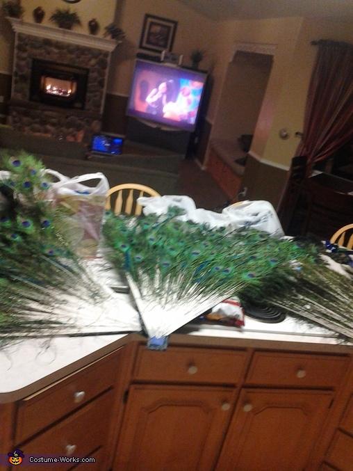 3 pieces, Homemade Peacock Costume