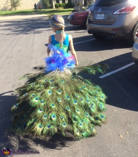 81b971597 Creative Homemade Peacock Costume for a Girl