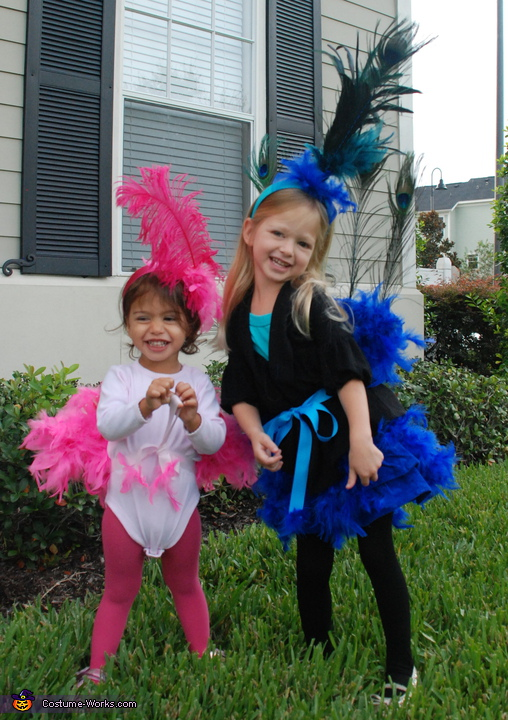 Peacock and Flamingo sisters - Homemade costumes for girls