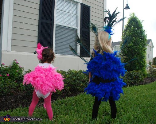 The back of the costumes. Peacock and Flamingo - Homemade costumes for girls
