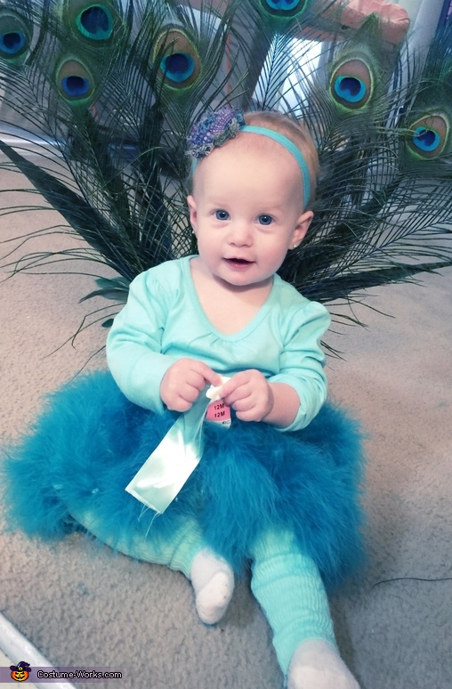 DIY Peacock Baby Costume