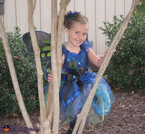 Peacock Fairy Homemade Costume