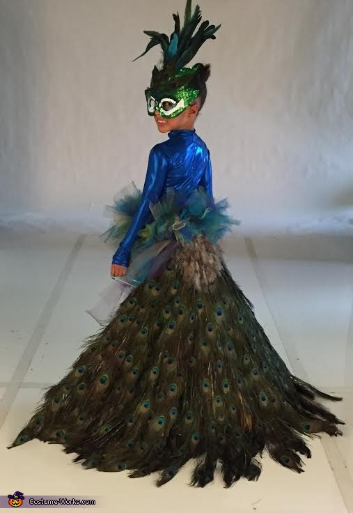 04c309c88 DIY Peacock Girl's Costume
