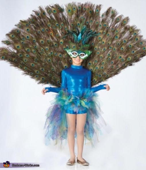 front view with tail up, Peacock Costume