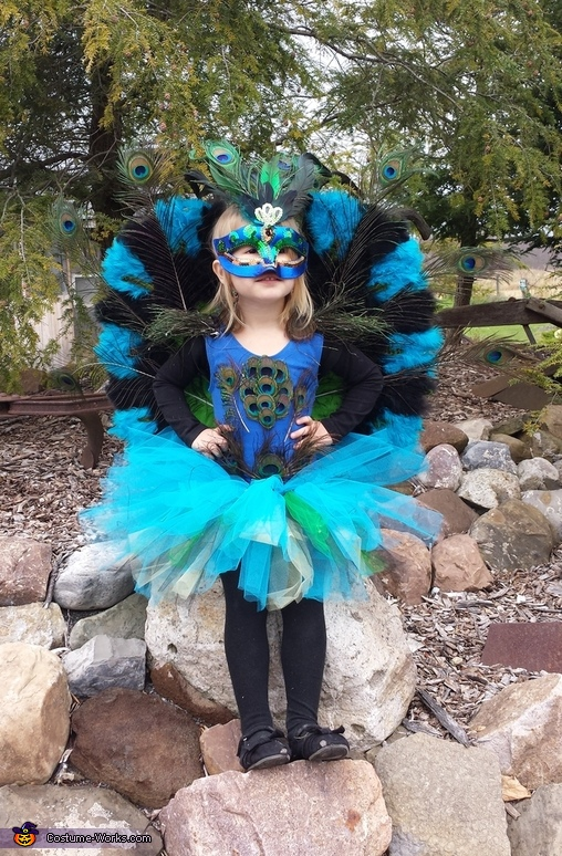 Peacock perched on the rocks, Peacock Princess Costume