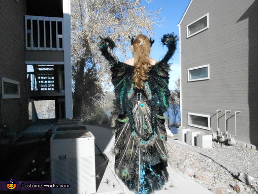 Peacock Princess Glory, Peacock Princess Costume