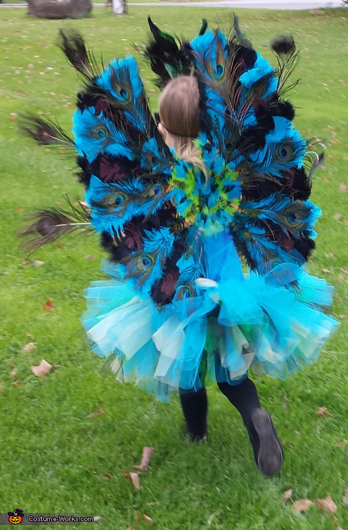 Back view, Peacock Princess Costume