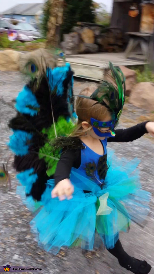 Peacock takes flight, Peacock Princess Costume