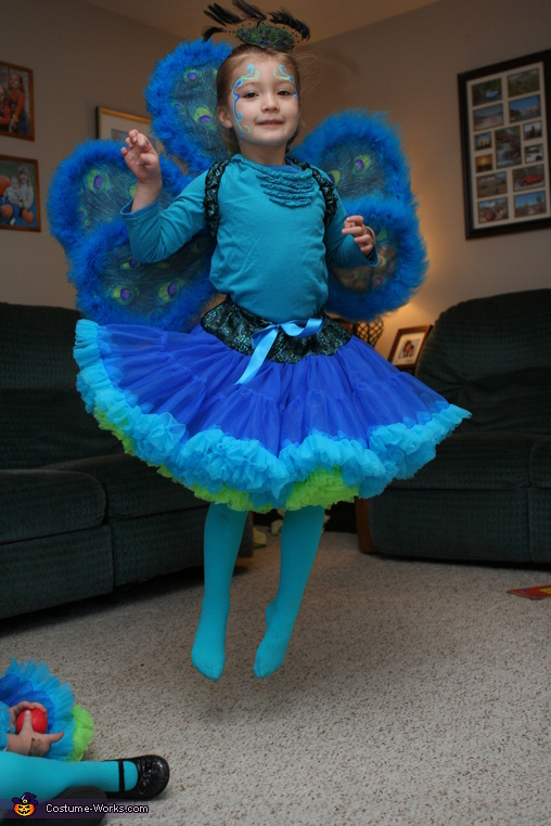Peacock Sisters Homemade Costumes