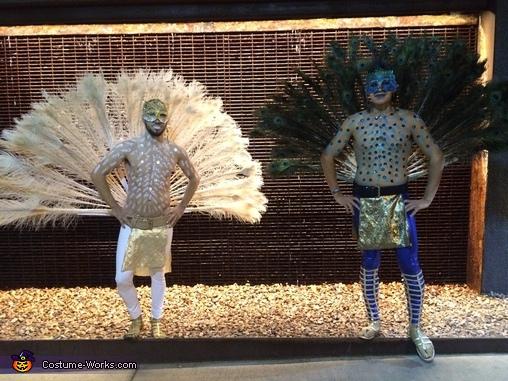 Peacock serenity, Peacocks Costume