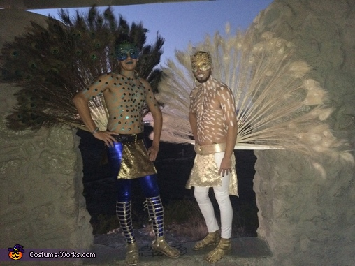 Peacocks Costume