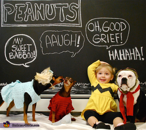 Peanuts Charlie Brown and Friends Costume