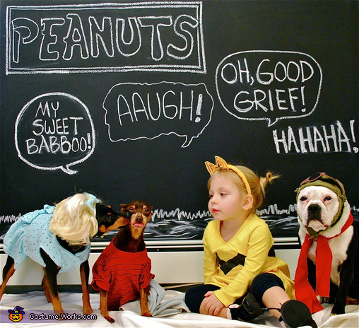 Everyone Loves the PEANUTS!, Peanuts Charlie Brown and Friends Costume