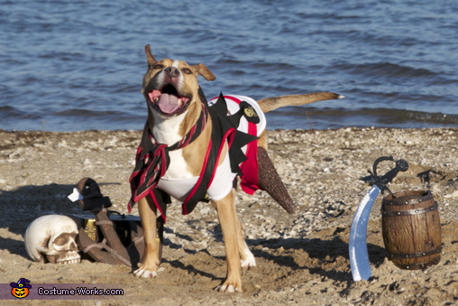 Peg-legged Pirate Dog Costume