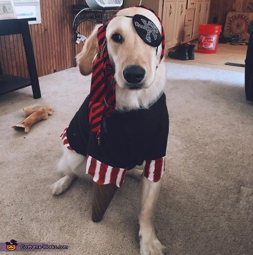 Peg-Legged Puppy Pirate Costume