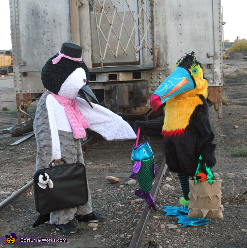 Penguin and Toucan Costume