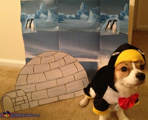 & Penguin Puppy Costume