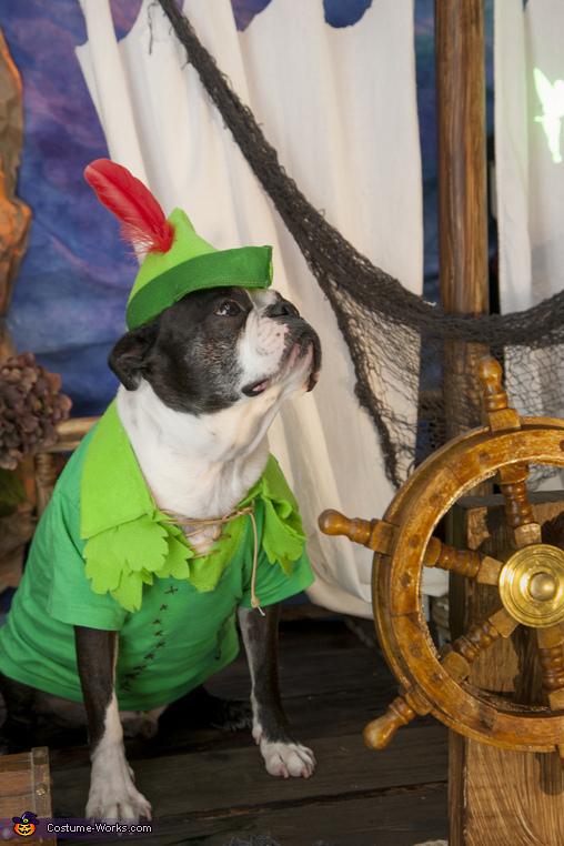Peter Pan Boston Style Costume
