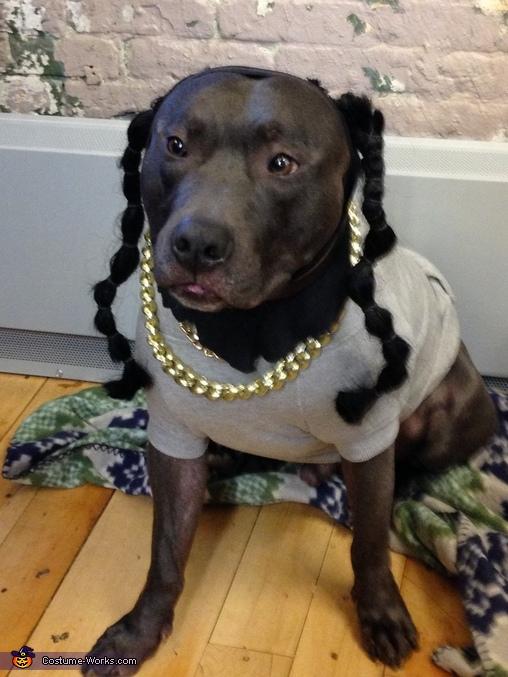 Snoop Dog , Pharrell Costume