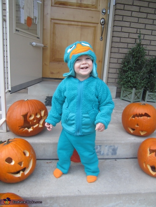 Perry the Platypus, Phineas & Ferb Family Costume