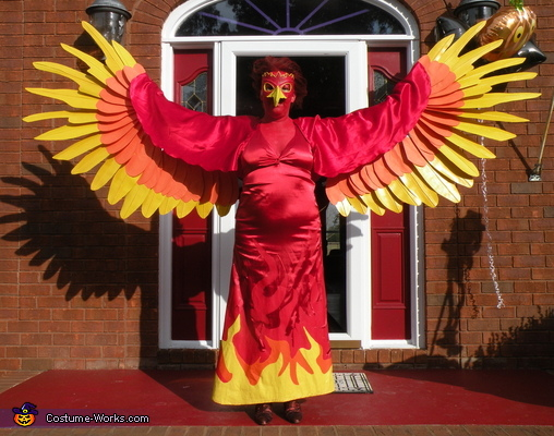 Unique Homemade Costume Ideas For Women Phoenix Halloween Cost...