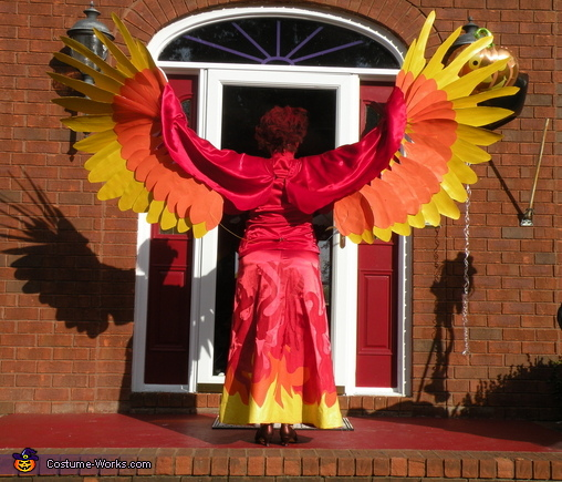 back view, Phoenix Costume