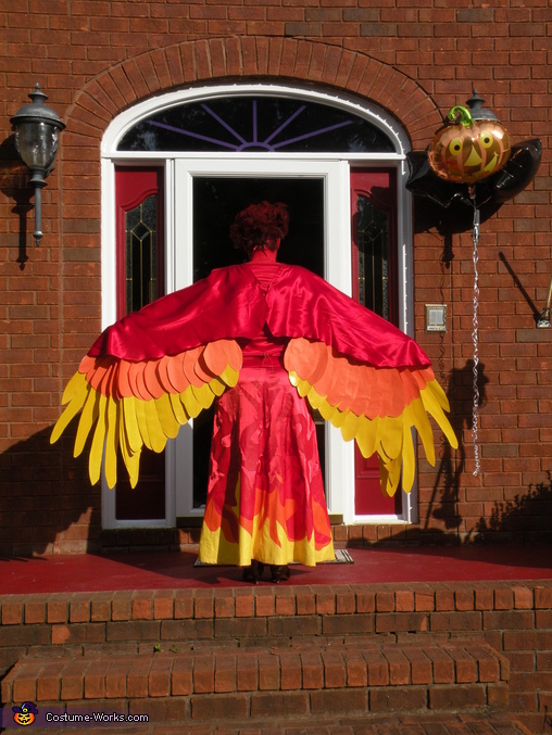 These wings actually fold all the way down like a Chinese fan:), Phoenix Costume