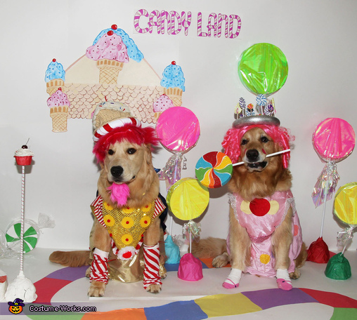 Phoenix and Gryphon in Candyland Costume