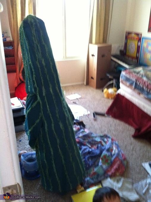 Back view of Saguaro Cactus, Saguaro Cactus Costume