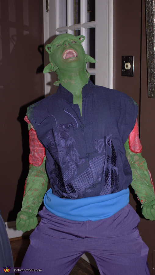 Getting into Character, Piccolo from Dragon Ball Z Costume